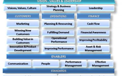 The Pinpoint model for business management